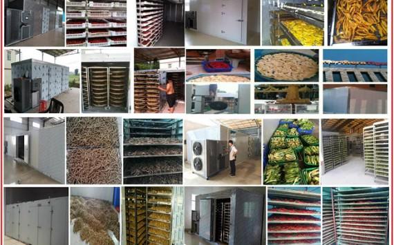 Máy sấy lạnh thực phẩm & những vấn đề chung bạn cần biết!